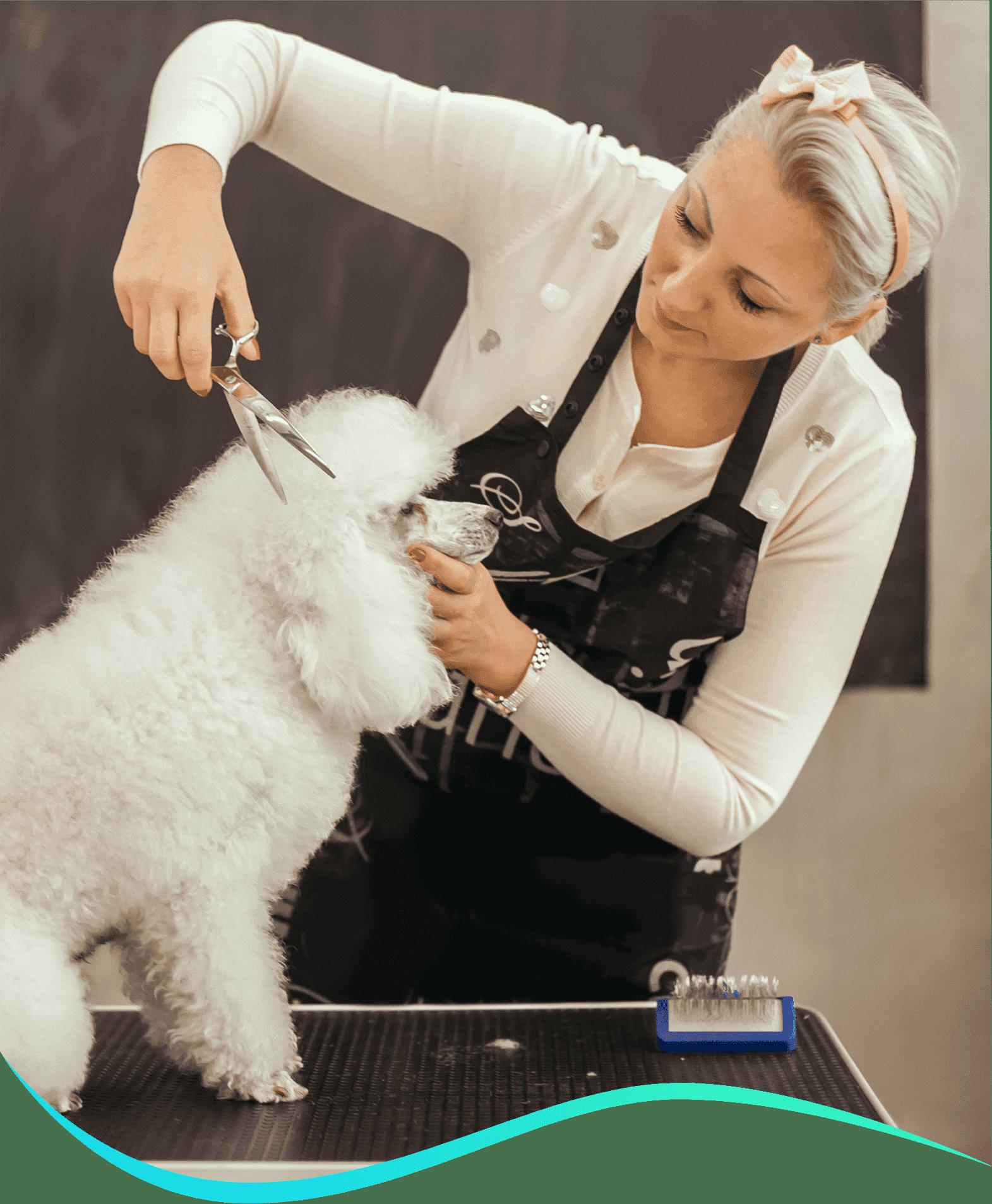 pet-grooming-specialist